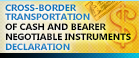 Cross-border Transportation of Cash and Bearer Negotiable Instruments Declaration